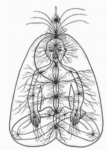 Hatha-yoga-et-méthode